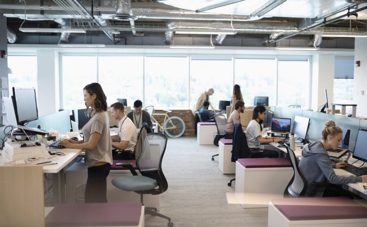 Science Explains Why Free Plan Offices Are Employees' Nightmares