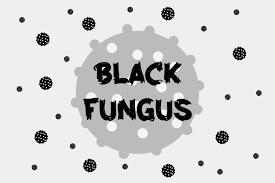 Prevention And Treatment Of Black Fungus Disease What Are The Symptoms Of Black Fungus?
