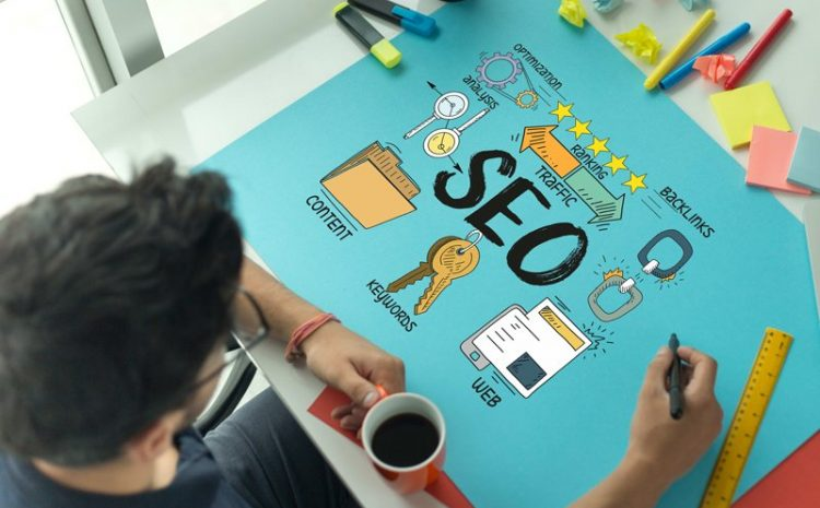 How To Become An SEO Professional? Site Traffic Improvement Expert