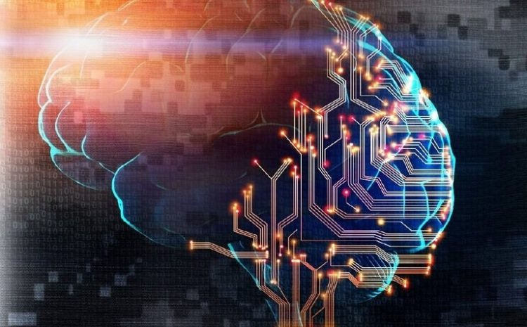 Neurogrins: The Interface Between The Brain And The Computer Of The Future