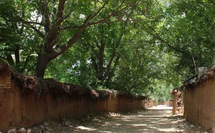 Qalat Village, One Of The Most Popular Sights Of Shiraz
