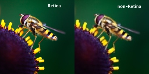 What Is A Retina Display And How Is It Different From Other Displays