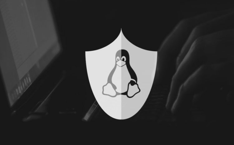 Why Did I Choose Linux?