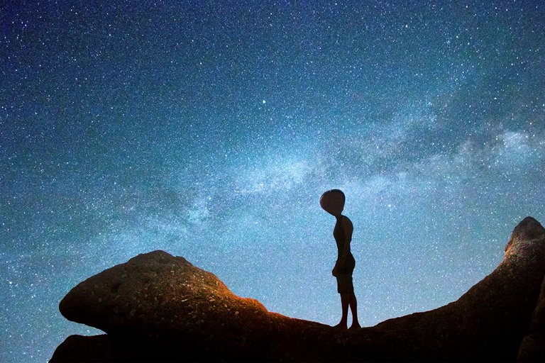 Extraterrestrials; From Microbial Extraterrestrial Life To Unidentified Bird Objects